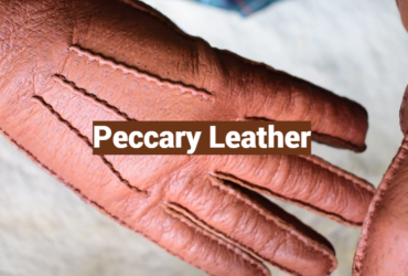 Peccary Leather: Definition, Uses, Care and Maintenance
