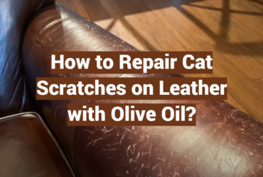 How to Repair Cat Scratches on Leather with Olive Oil?